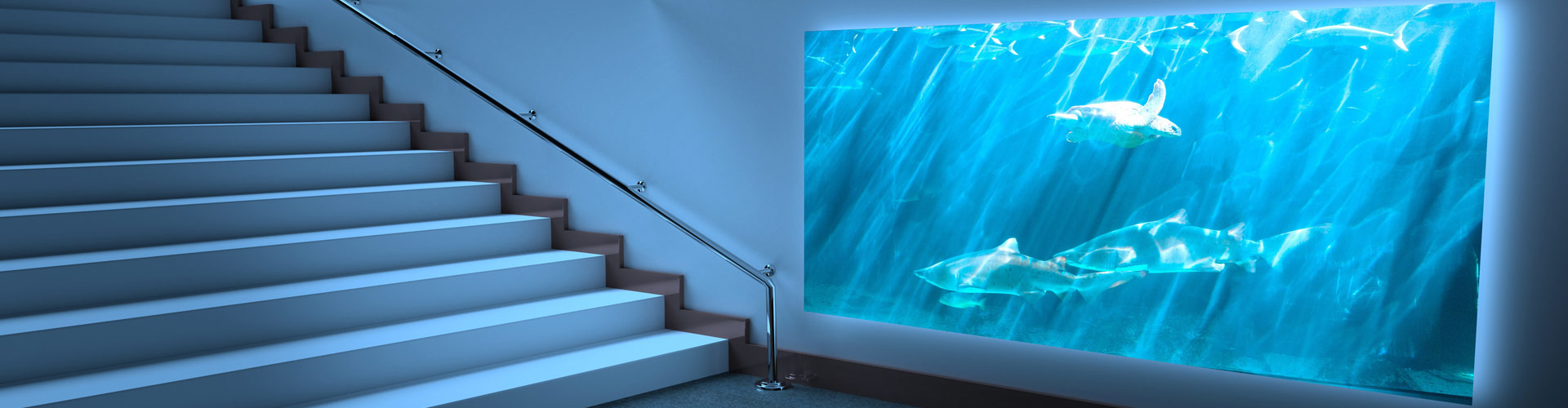 Installation d'aquarium H²O Design inc.